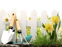 Projekt ogrodu kwiatowego jako pomysł na kartę upominkową