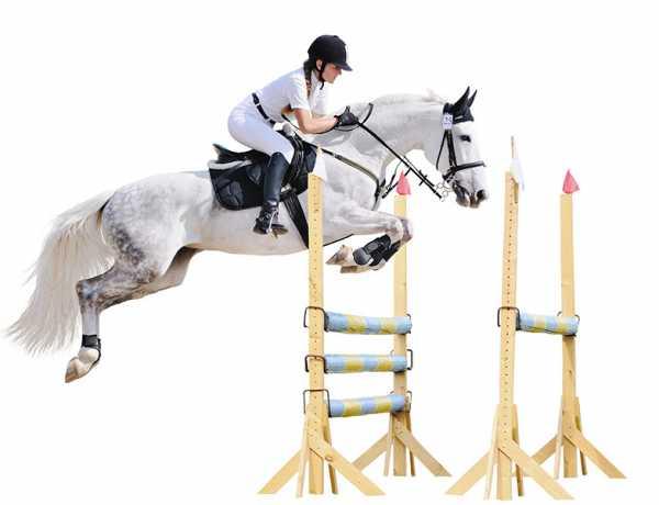Zobacz naukę jazdy konnej dla dzieci